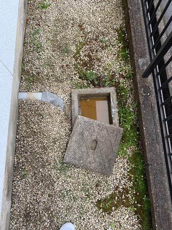 藤井寺市のトイレつまりの様子
