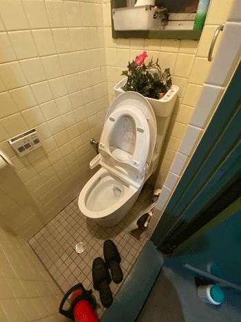 寝屋川市の台所排水つまりの様子