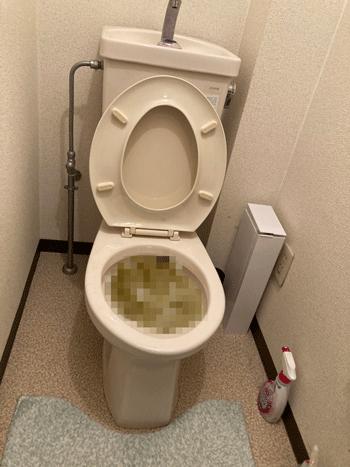 八幡市のトイレつまりの様子