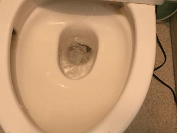 貝塚市のトイレつまり解消後の様子