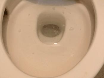 貝塚市のトイレつまりの様子